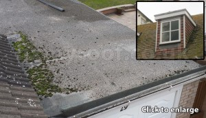 Roof survey roof report flat roof dorma
