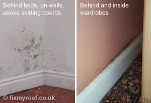 Black mould behind beds walls and wardrobes