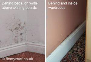 Black mould behind beds walls and wardrobes