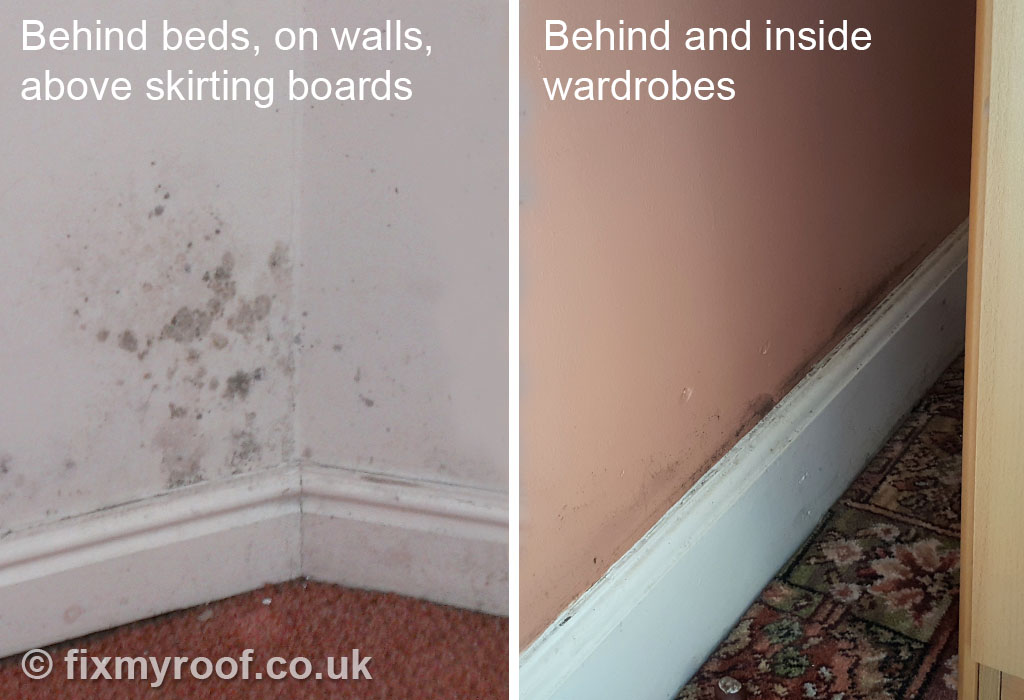 What does condensation and mould look like. How to Cure Condensation FREE   Top 10 Tips to a Condensation Cure