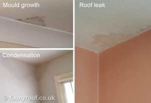 Stain on ceiling condensation mould leak