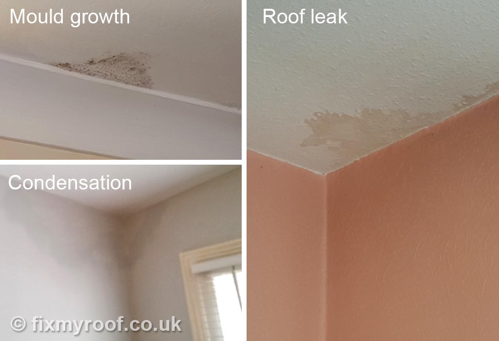 Stains on ceilings   These are typical stains on bedroom and bathroom  ceilings  A leak in well over 90  of cases has a brownish look to it  just  like spilt. How to Cure Condensation FREE   Top 10 Tips to a Condensation Cure