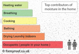 Sources of moisture in the home