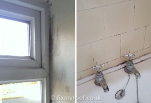 window-mould-bath-tiles-black-mould