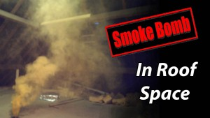 Roof ventilation smoke test