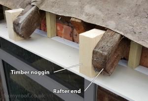 Rafter end noggin fascia