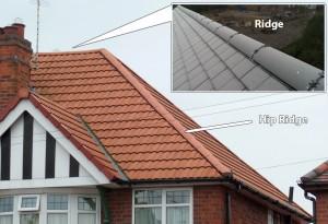 Dry ridge & Hip ridge system