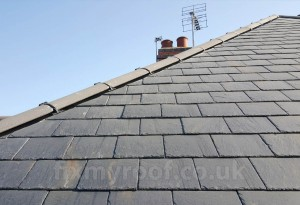 Dry ridge on slate roof